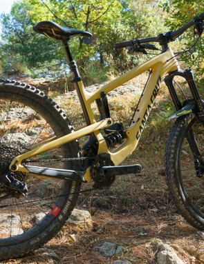 This is a bike that's willing and able to take on whatever trail you want