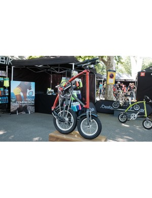 The bikes fold impressively small