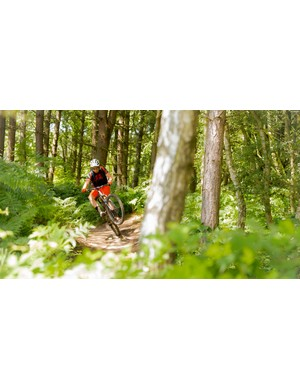 More wooded singletrack than you can shake a stick at plus a bike park make Sherwood Pines a must-visit