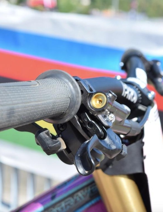 Shimano Saint brakes, run just below 45 degrees from horizontal