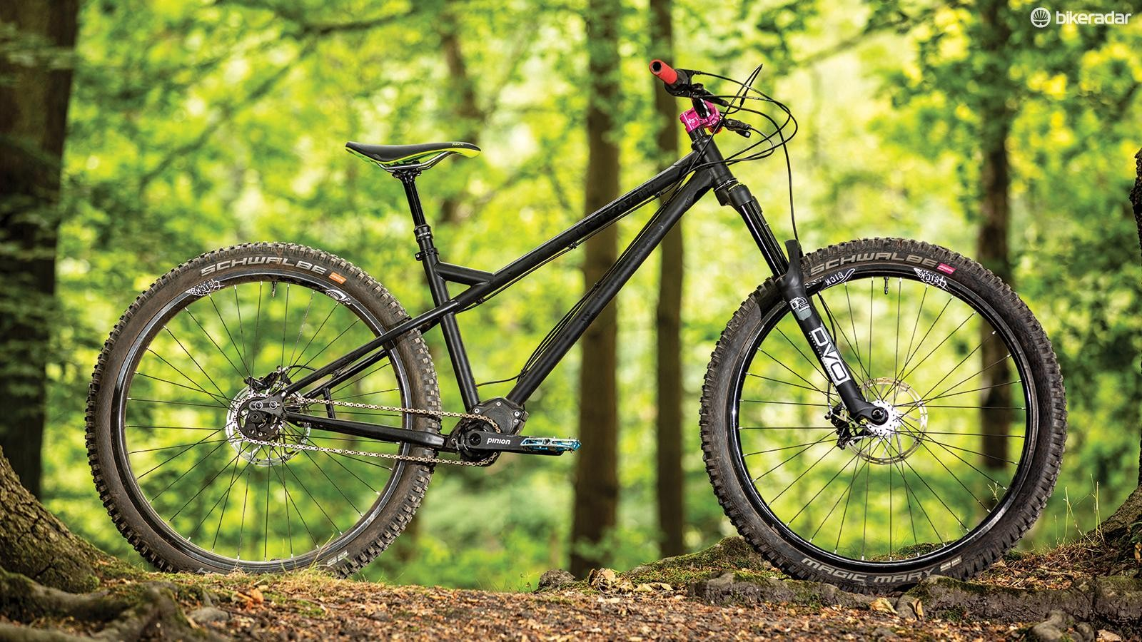The Pinion gearbox doesn't need vulnerable derailleurs and can shift while stationary, but it's heavy, draggy and it can be hard to shift under power