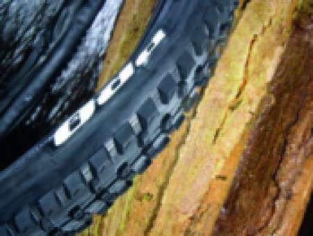 Specialized Enduro Pro Tyre