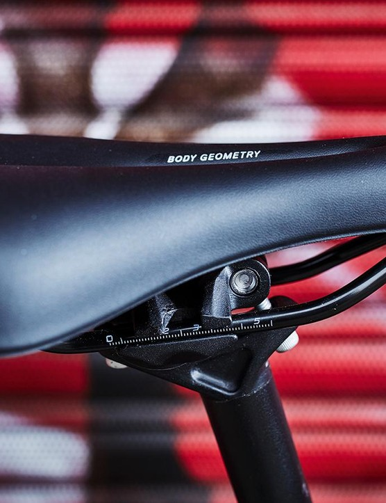 The comfortable Riva Sport Plus saddle
