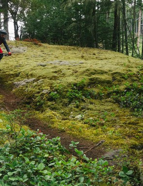 More loamy goodness and some awkward, steep sections that tested both the bike and riders' agility