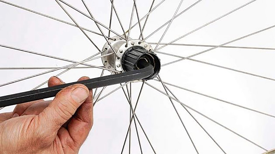 How to overhaul your freehub - BikeRadar
