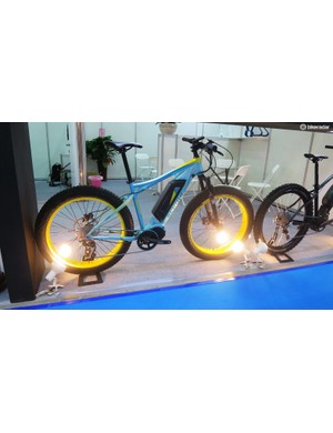 Plus sized e-mountain bike but that head angle makes it look like it's already run into a wall