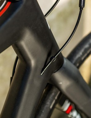 The carbon frame is paired with a carbon fork