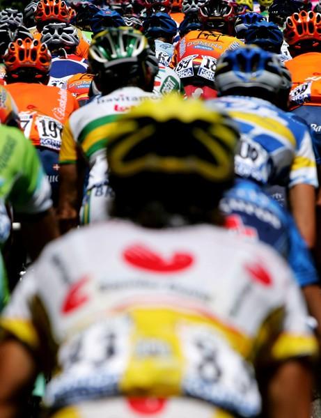 Tour de France team guide
