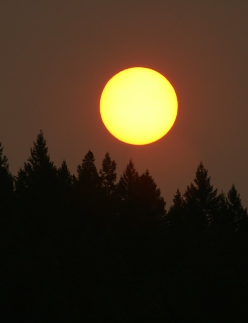 Forest fires coloured the sunrise