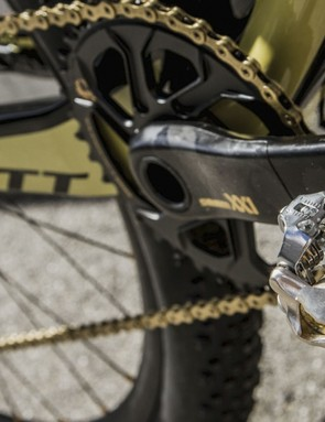 We feel like Ritchey should have made a set of gold WCS v6 pedals for this bike