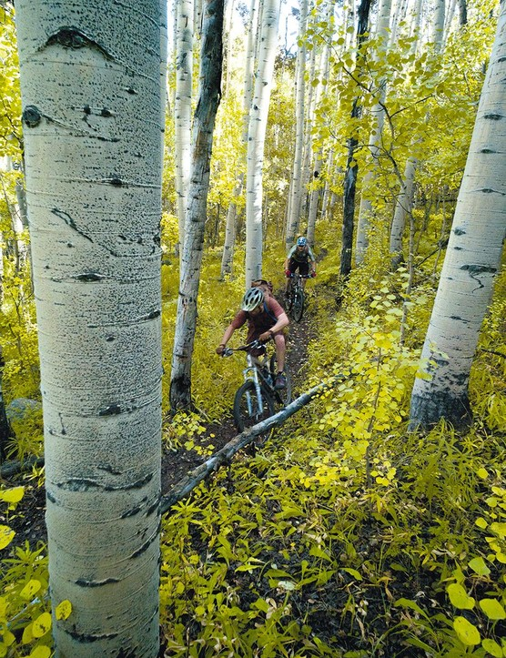 Best For Controlling Incontinence: Colorado Trail - USA