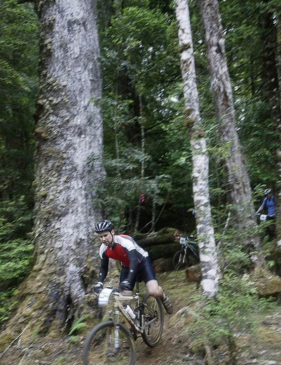 Riders emerge from amidst giant myrtle forest on the Que River competition stage