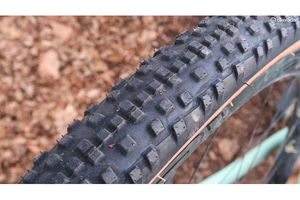 The WTB Resolute tyre