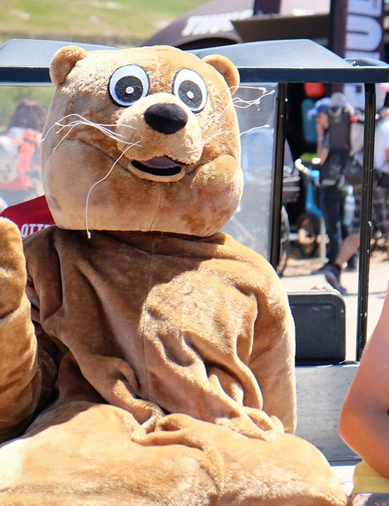 Sea Otter is full of weird and wonderful people and products