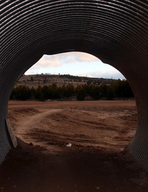 The tunnel of love - riders pass through here close to the start/finish