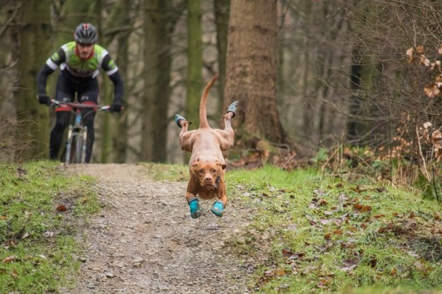 Our pick of the top 6 videos from BikeRadar's YouTube channel
