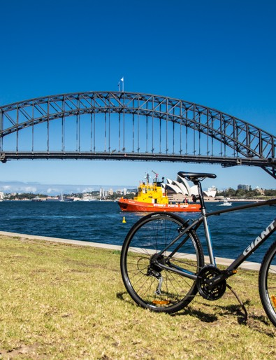 Giant Escape 1 2014 - out on a sunny day in Sydney, Australia