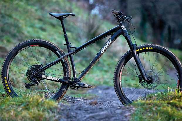 Bird Zero 29 hardtail mountain bike