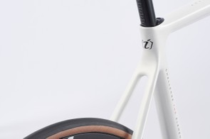 Isaac Boson Disc's slender seat stays