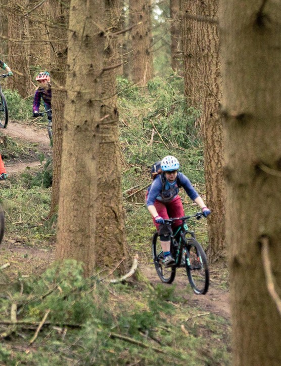 group of female cyclist riding mountain bike in woods