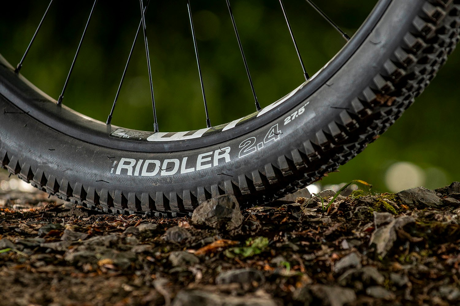 Surly Bridge Club review WTB Riddler Comp tyres