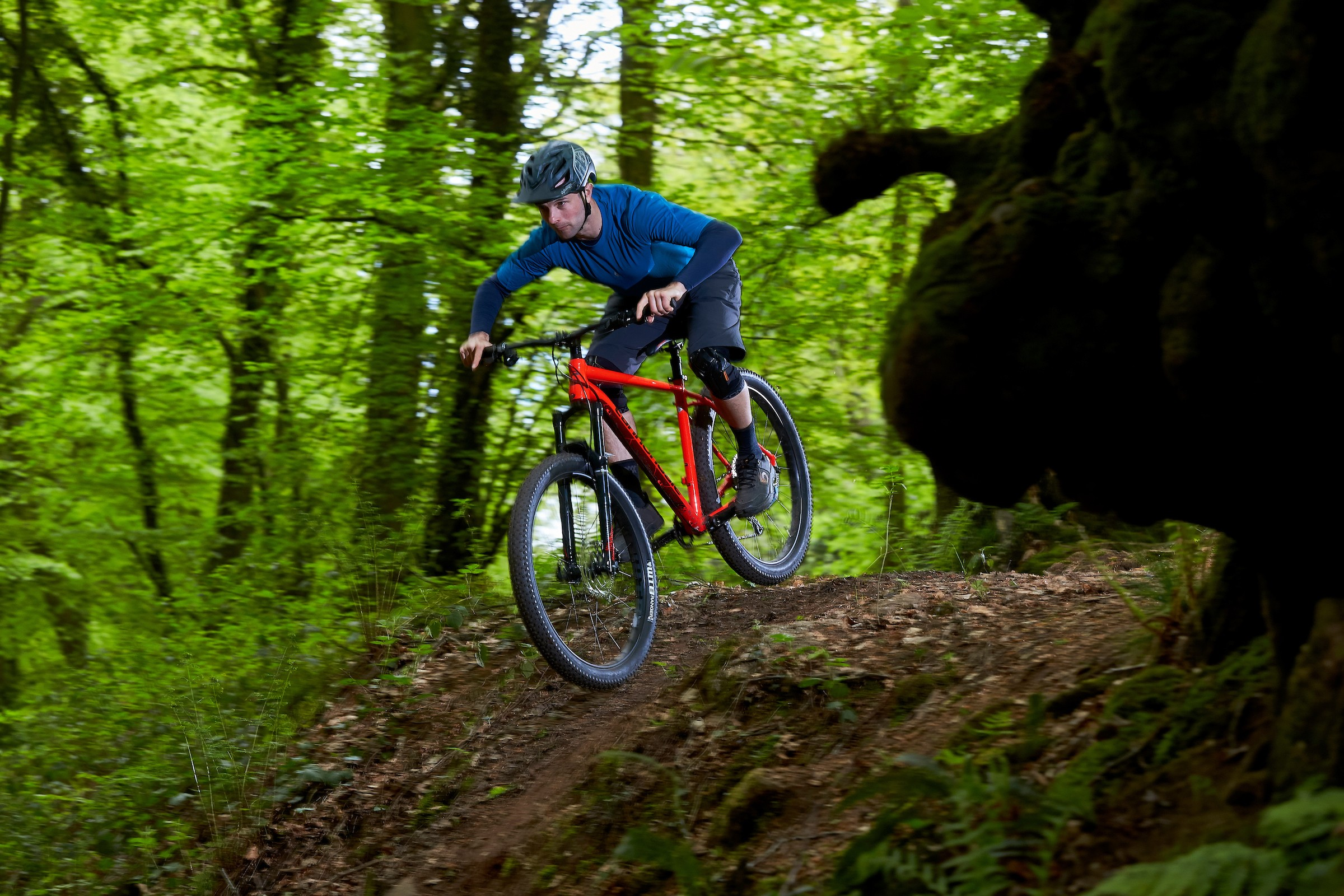 Cyclist riding Cannondale Cujo 1 in woods