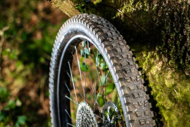 Mountain bike tyre on wheel