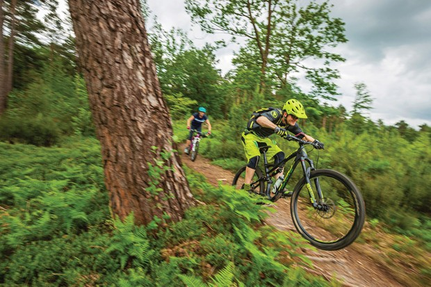 male cyclists riding mountain bikes through woods