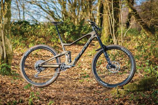 Gold full-suspension mountain bike in woods