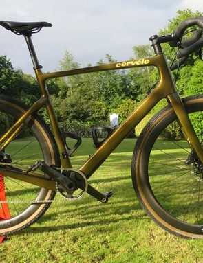 gold gravel road bike