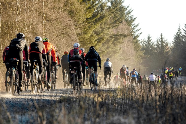 Large group of cyclists riding through Kielder Forest