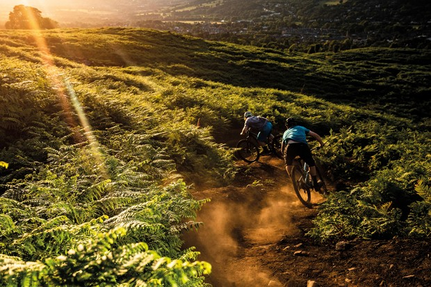 Cyclists riding mountain bikes in countryside