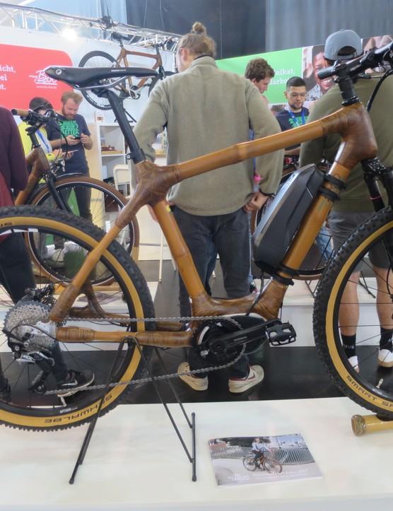 Bamboo e-bike
