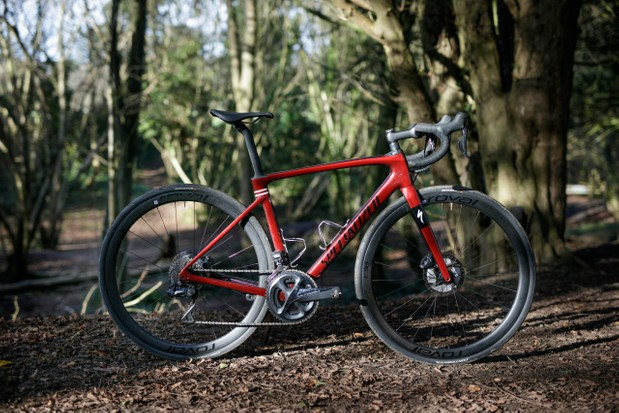 Specialized Roubaix in woods