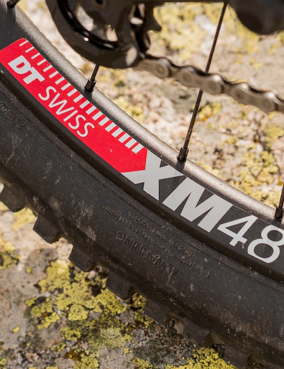 DT Swiss XM481 rims and Maxxis Minion tyres on the Bird Aether 7