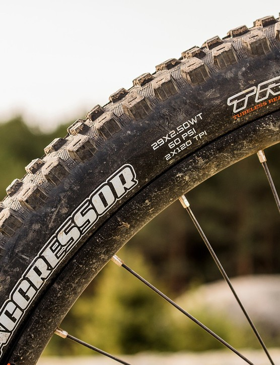 Maxxis Aggressor DD tyre on the rear wheel of mountain bike