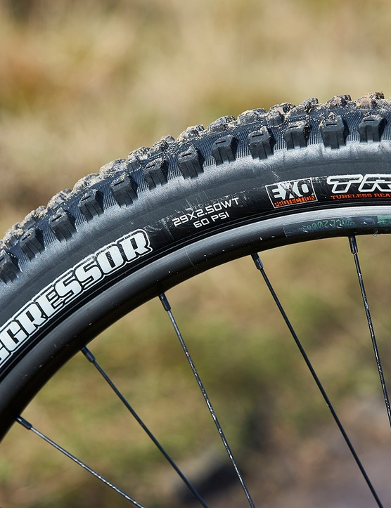 Maxxis Aggressor tyre on NS Bikes Define AL mtb. Bike Park Wales, Gethin, Wales. February 2020.