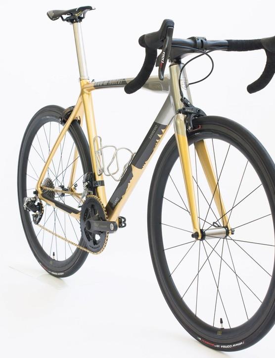 Passoni bike auction for coronavirus pandemic