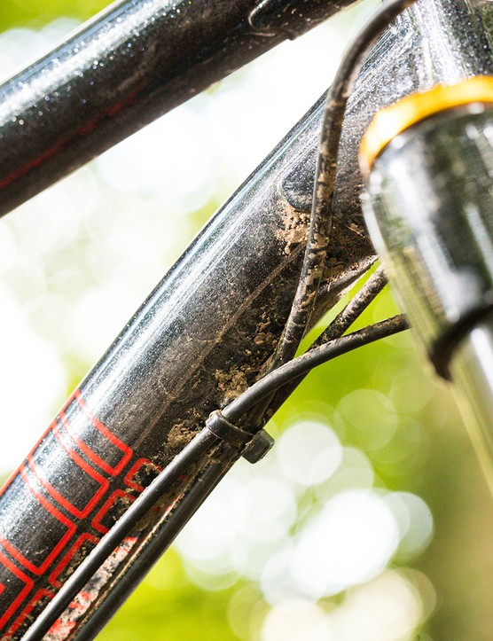 The Marin El Roy hardtail mountain bike has external cabling