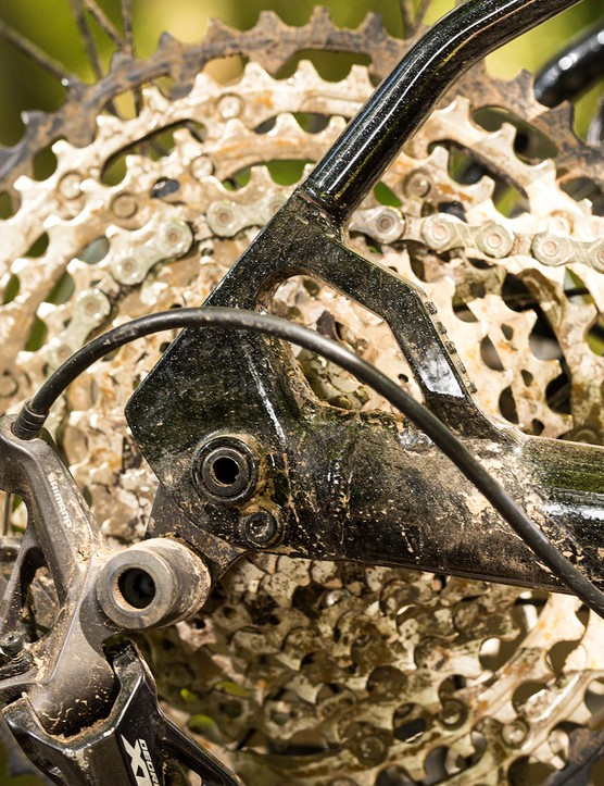 Dropouts and cassette on a hardtail mountain bike