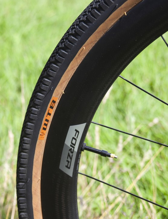WTB tyre on Forza rim
