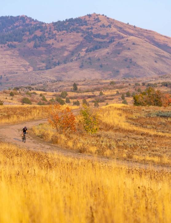 Gravel rider in open landscape