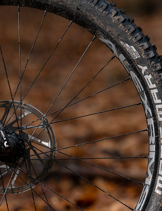 Alex Rims DP30 rims are used on the Canyon Stoic 4 hardtail mountain bike