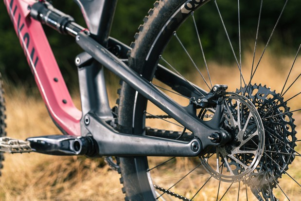 The rear triangle on the Canyon Spectral 29 CF 7 mountain bike