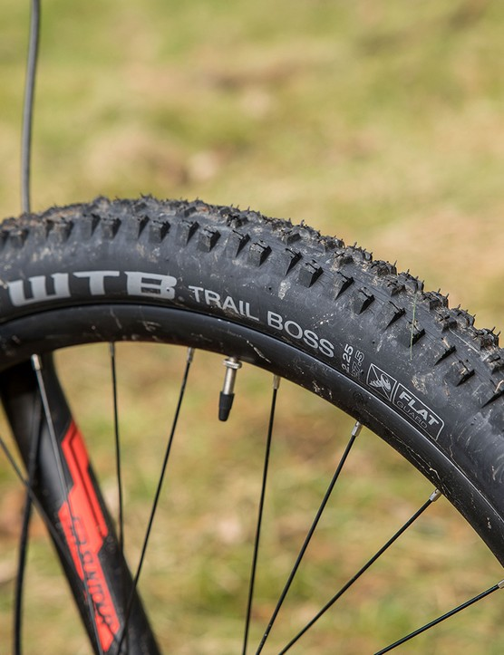 Carrera Fury hardtail mountain bike has WTB tyres