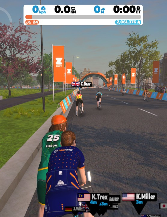 Zwift Hide Display Off