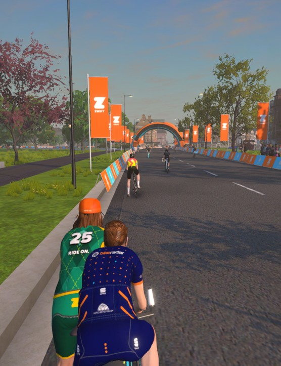 Zwift Hide Display On