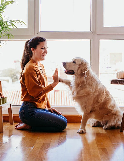 Pet dog and a woman on a bed