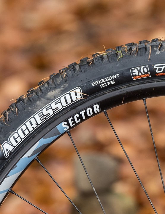 Maxxis Aggressor EXO TR tyte on the rear of the hardtail Kinesis Rise Pro eMTB