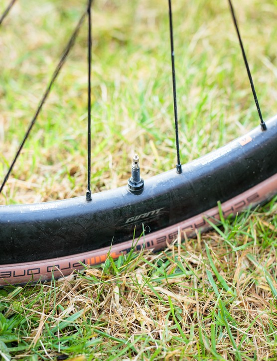 Schwalbe Pro One TLE Transparent tyre on Giant SLR 1 wheel